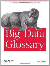 Big Data Glossary : un livret qui porte mal son titre