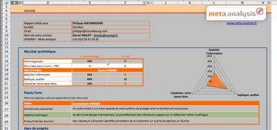 Le rapport envoyé par Synergy au format Excel