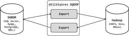 Sqoop tourne autour de 2 activités répartis sur ses deux utilitaires, l'utilitaire d'import et l'utilitaire d'export.