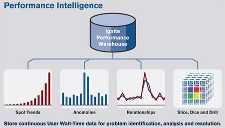 Performance Intelligence – Business Intelligence