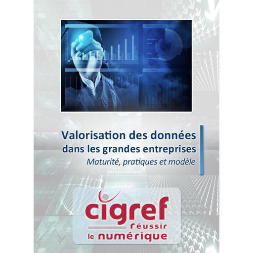 Guide Cigref 2016 - Valorisation des données : maturité, pratiques et modèle ?