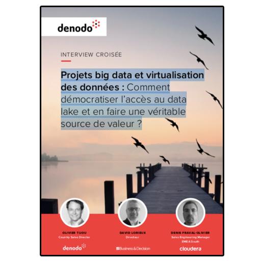 [Promotion] Livre Blanc Denodo : Projets big data et virtualisation des données, comment démocratiser l'accès au data lake et en faire une véritable source de valeur ?