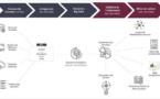 NP6 Consulting devient Socio Data Management