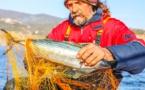Bumble Bee Foods utilise la technologie blockchain de SAP pour garantir la traçabilité de son thon de l'océan à l'assiette