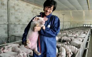 Ceva Santé Animale retient Microstrategy : architecture, sécurité et perspectives