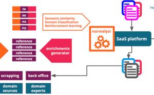 YZR, une solution tactique pour normaliser un premier référentiel de données