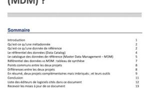 Note de recherche : Différencier le Data Catalog, et le Master Data Management (Contenu Premium)