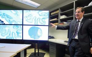 200 To pour une image du cerveau humain : le big data en neurosciences
